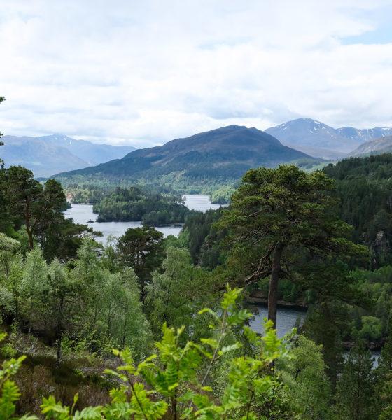 Highlands | Glen Affric & autour du Loch Ness